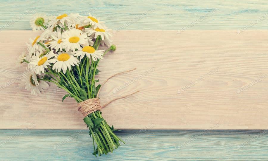 عکس دسته گل بابونه